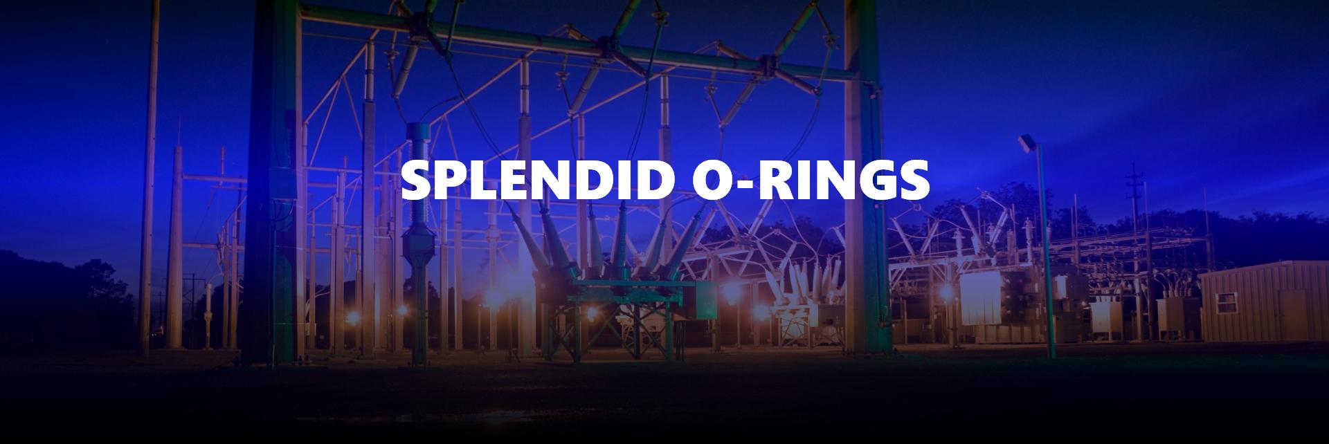 SPLENDID O-RINGS